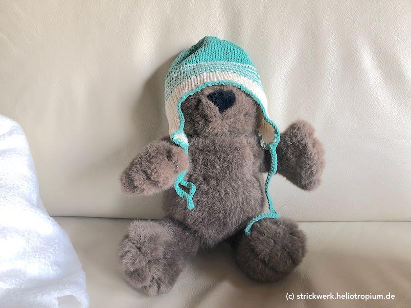 Teddy, der eine Mütze trägt